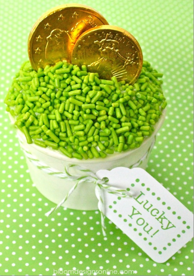 Ice cream with green sprinkles and chocolate gold coins.