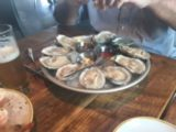 Alley Cat Oyster Bar Again