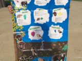 Summer Fun with The Young Scientists Club – Science on a Tracking Expedition