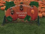Fun at Fall Fest at Nickajack Farms!